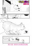 猫愿三角恋漫画第33话